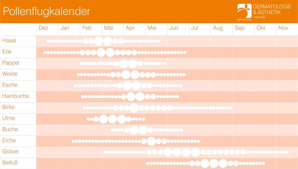 Erfahren Sie in unserem Pollenflugkalender, wann welche Pollen auftauchen.